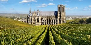 winetourism on winetourbooking