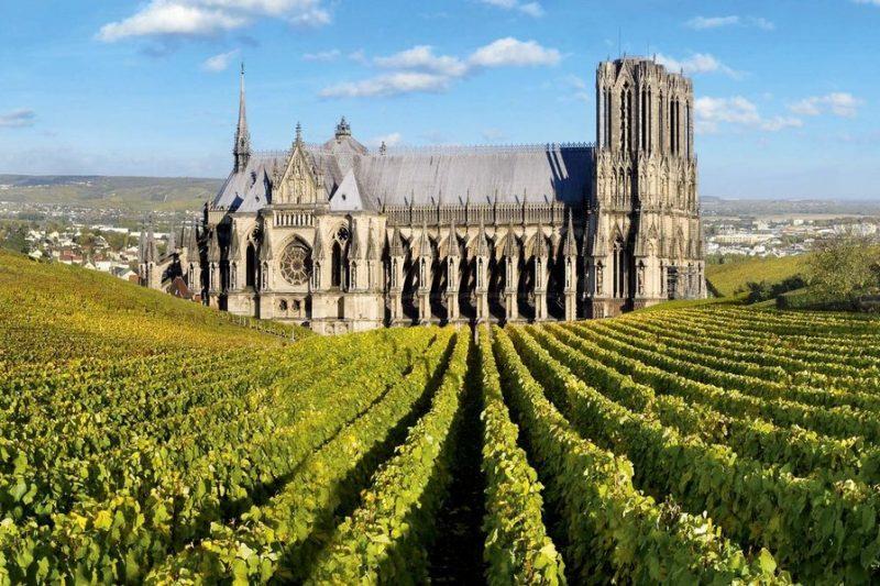 champagne 800x533 - Маршруты по Франции
