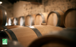 Oenotourisme-WineTourBooking
