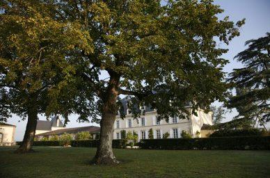 Chateau-Garnaud-france-wine-vin-tourisme-winetourbooking-oenotourisme