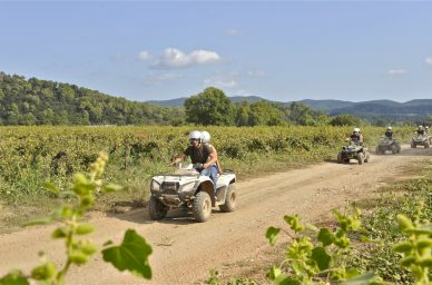 France-winetourisme-wine-vin-winetourbooking-oenotourisme