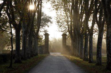 Entree-Garnaud-france-wine-vin-tourisme-winetourbooking-oenotourisme