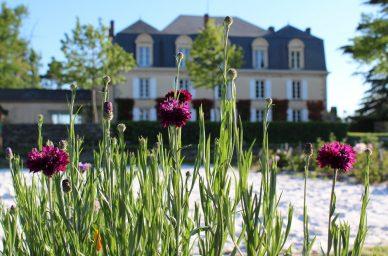 france-wine-vin-tourisme-winetourbooking-oenotourisme