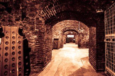 caves-champagne-charles-mignon-vin-champagne-oenotourisme-france-wine-vin-tourisme-winetourbooking-oenotourisme-bordeaux