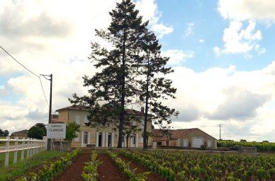 chateau-clarisse-vigne-france-wine-vin-tourisme-winetourbooking-oenotourisme-bordeaux