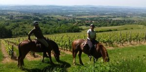 Horse riding at Château Chatain