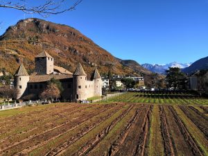 enoturismo francés WineTourBooking