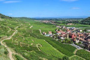 Vue du vignoble alsacien donnant sur les villages traditionnels