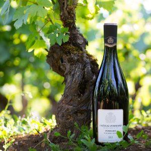 Bouteille de vin du Château de Pommard dans les vignes