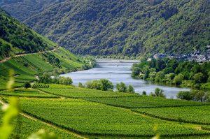 Moselle en Allemagne