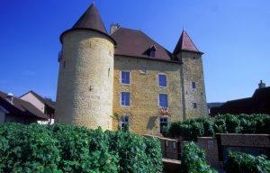 Museum of Vine and Wine of Jura