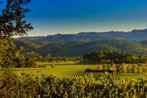La Napa Valley en Californie