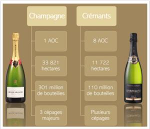Les principales différences entre Champagne et Crémant Wine Tour Booking