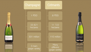 Differencer between champagne and crémant wine tour booking
