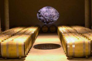 Vignoble des Verdots cave vignoble sud ouest oenotourisme wine tour booking
